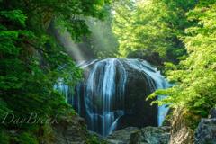 新緑の関山大滝 その1