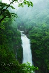 雨の秋保大滝