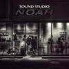Monochrome Noah again