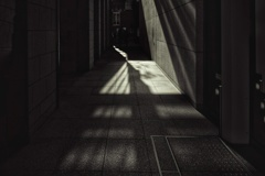 回廊を照らす冬の陽射し Ⅱ