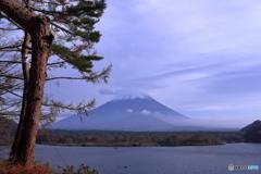 精進湖の秋