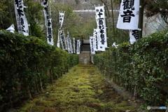 鎌倉石の苔の石段