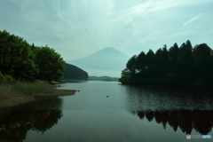 薄曇の田貫湖