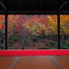 庭園の秋<圓光寺>