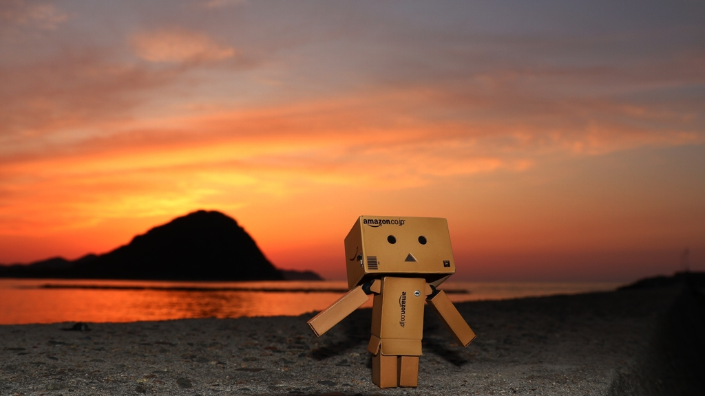 With DANBOARD