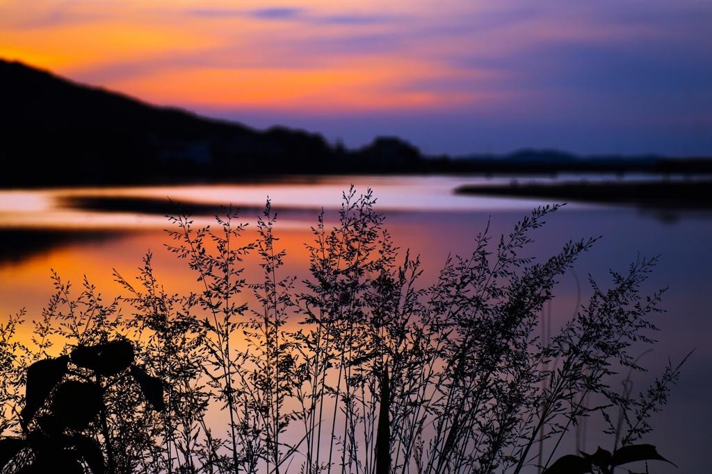 河口付近の夕景:再現像