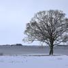 心に残る冬景色
