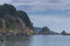 中の浜の風景