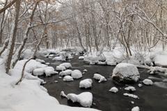 三乱の流れ・冬の図