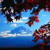富士山紅葉そえて