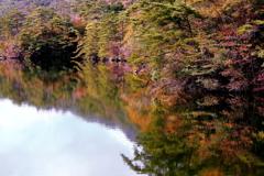 燃えるベニマンサク湖