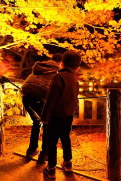 東山動植物園ライトアップ(4)