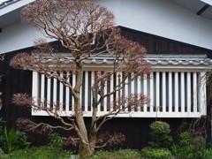 愛媛県 内子町3