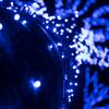 青の洞窟 2016