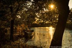 木曽川水園の夕暮れ