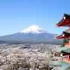 富士山 桜 五重の塔 新倉山浅間公園 その2
