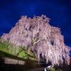 岩太郎のしだれ桜