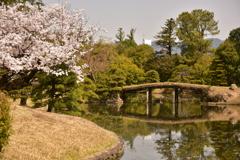 衆楽園と満開の桜