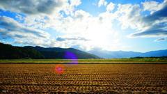 西日の中に、 田園の秋。