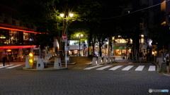 夜の街の明かりに魅かれて 2