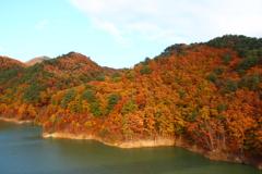 バイバイ…秋