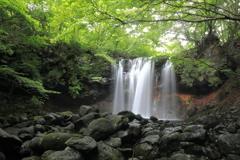 乙女の滝 夏景