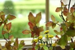 花と器のハーモニー2019-372