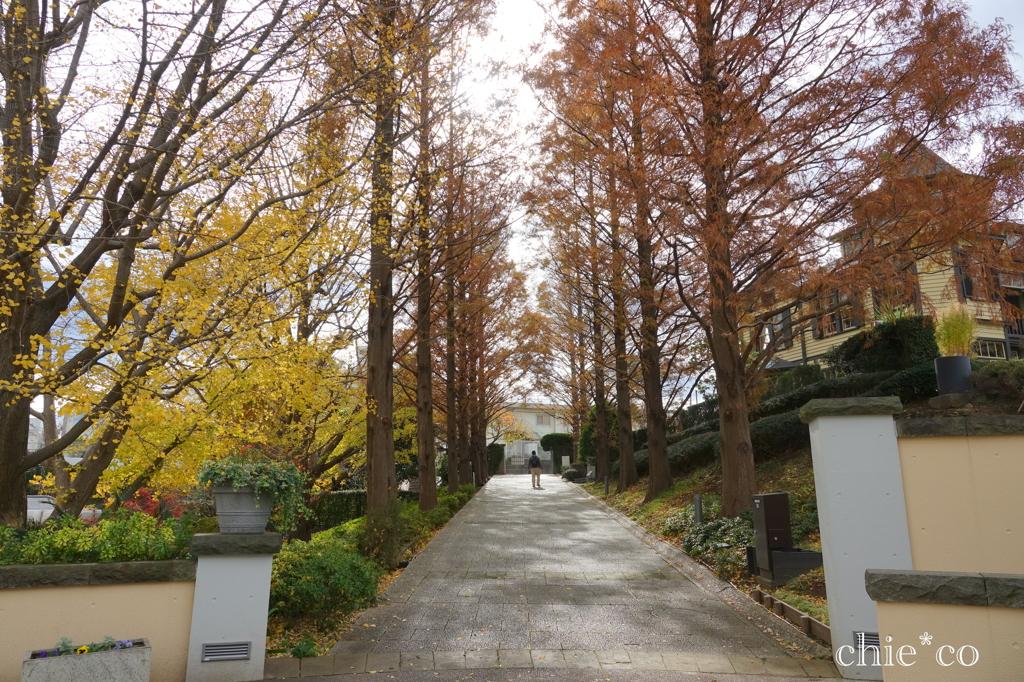 山手イタリア山庭園-239