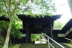 円覚寺-238