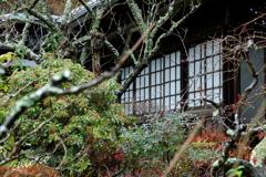 鎌倉瑞泉寺。。-093
