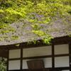 鎌倉-487