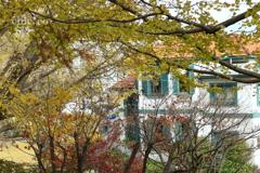 山手イタリア山庭園-249