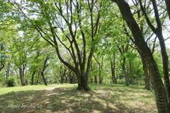 久良岐公園-126