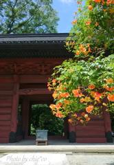 鎌倉-267