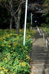 森浅間神社-143