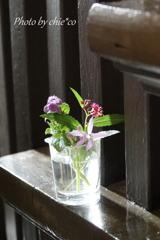 生けた花。。3