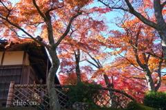 箱根美術館-160