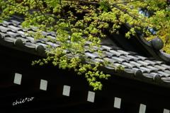 鎌倉-324