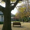 横浜山手西洋館-486