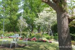 石川町~イタリア山庭園-202