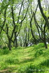 久良岐公園-130