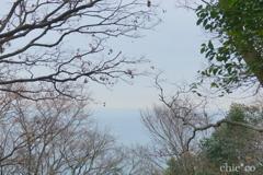吾妻山公園-218