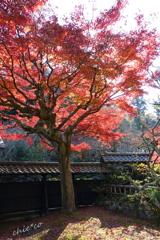 北鎌倉-358
