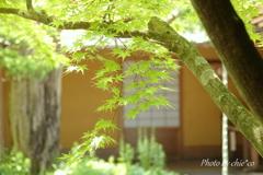 一条恵観山荘-252