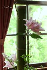 花と器のハーモニー2019-378