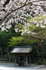 鎌倉-343