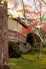 箱根美術館-149