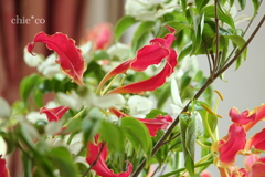 花と器のハーモニー2019-384