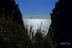 江の島-315