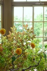花と器のハーモニー2019-370